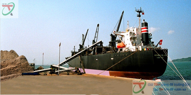 Dây chuyền băng tải cao su tải dăm gỗ - hethongbangtai.vn