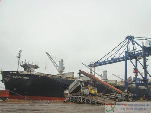 Băng tải cao su tải dăm gỗ